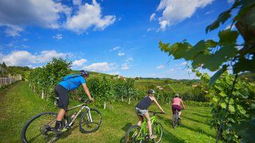 Slovenia Green Capitals Route