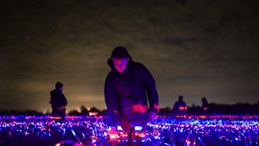 Olanda: Grow, il campo di luci di Daan Roosegaarde che esalta la bellezza della terra. E fa crescere le piante