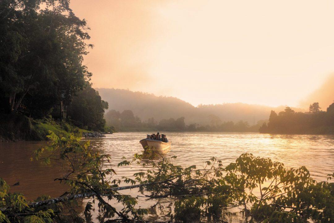 Il canto della foresta: avventura nel Borneo Malese, tra giungla, oranghi e mari tropicali