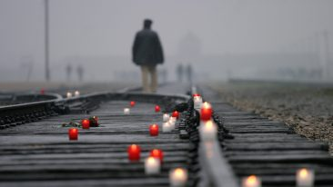 Giorno della Memoria: cos'è, il significato e gli eventi in Italia