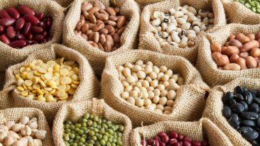 giornata mondiale dei legumi