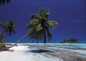In barca alle Maldive: il modo migliore per scoprirle, tra immersioni e relax