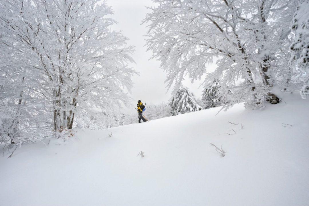 Ciaspolate in Aspromonte: a Gambarie, sulla neve con vista mare