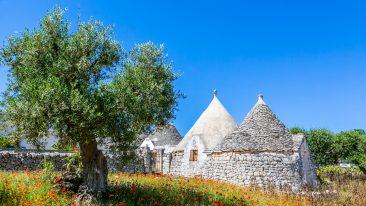 Posti da vedere in Puglia