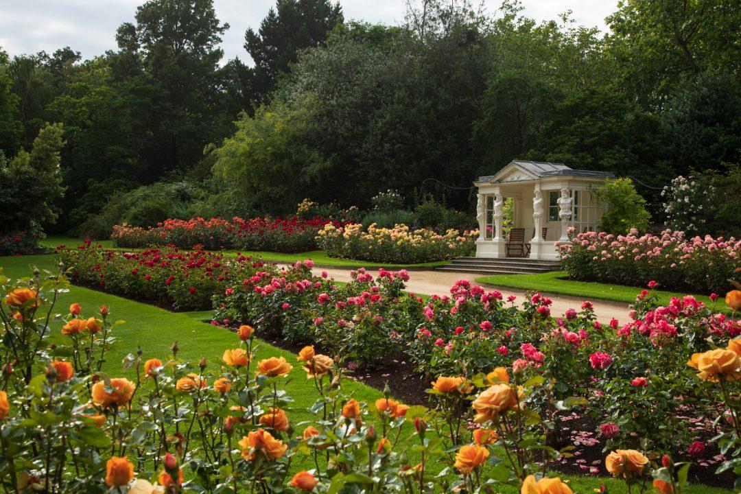 Giardini di Buckingham Palace