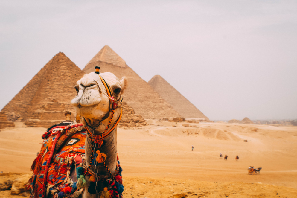55 - Egitto