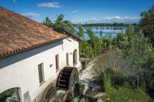 Gita fuoriporta in Lomellina: i piaceri della campagna vicino a Milano