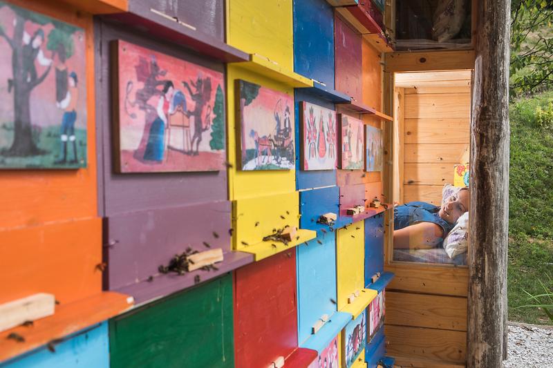 Una galleria d'arte per le api