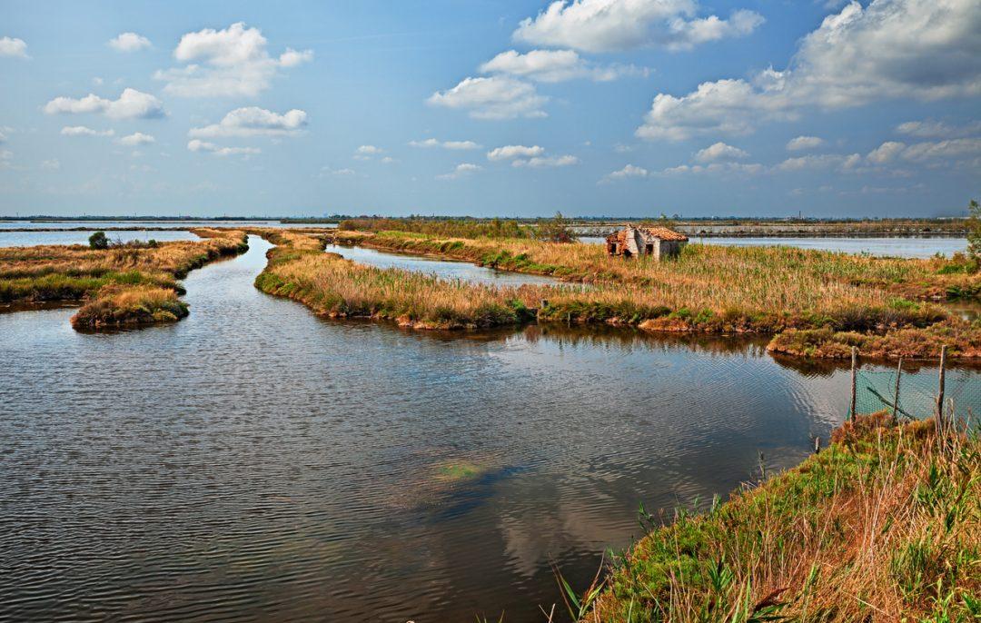 Tra storia e natura: l'agriturismo sul Delta del Po
