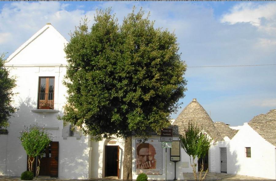 Museo del Territorio (ex casa Pezzolla)