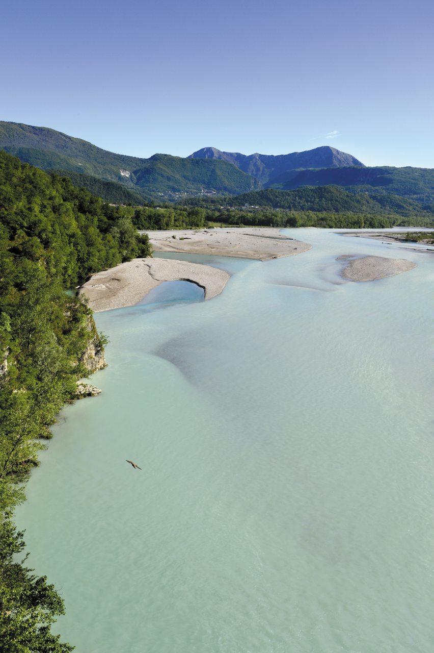Dove Academy in Friuli Venezia Giulia 2021: un fiume di emozioni