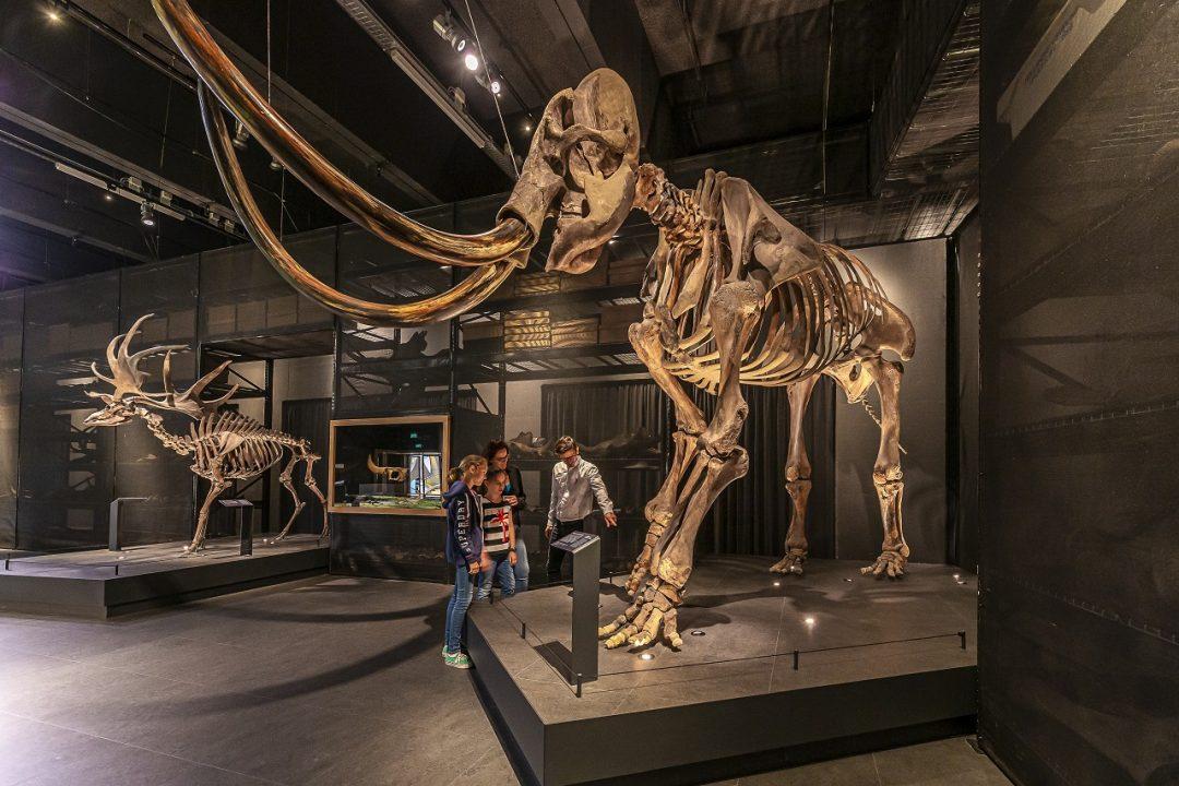 Museo Europeo dell'anno 2021