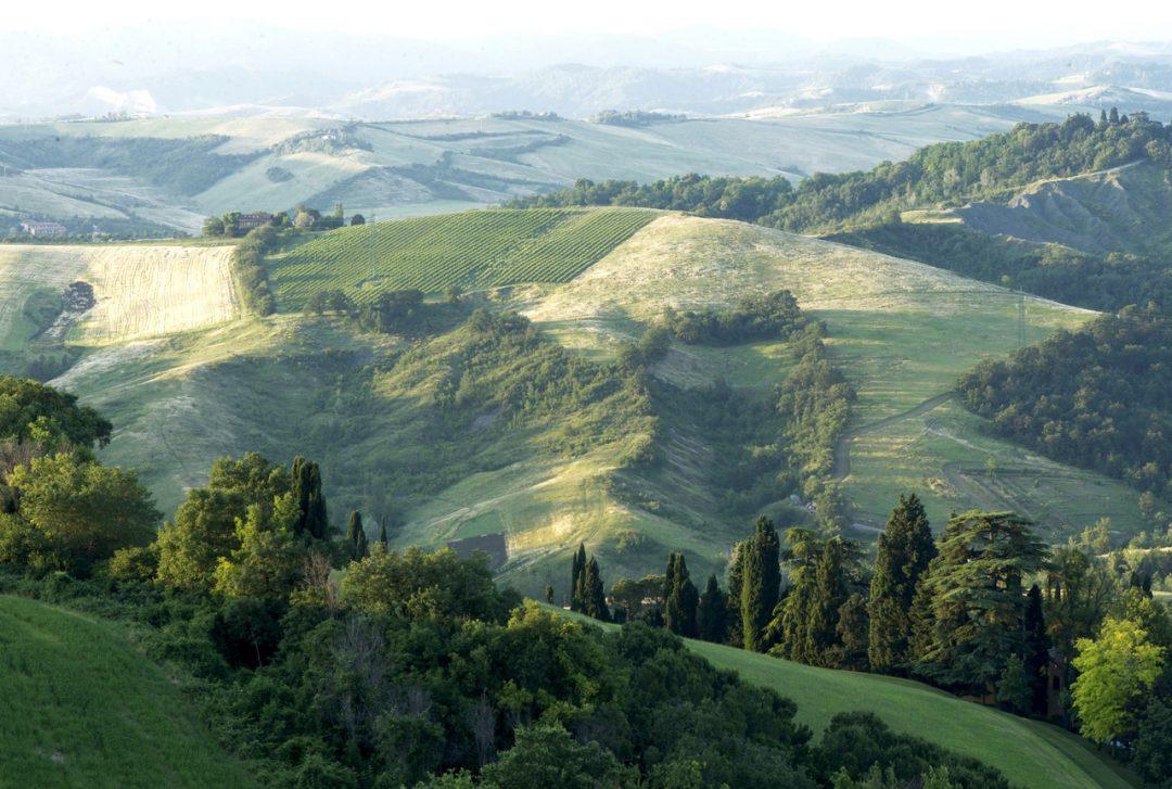 """L'estate di """"Scena natura"""" sui colli bolognesi: ecco tutti gli eventi in programma"""
