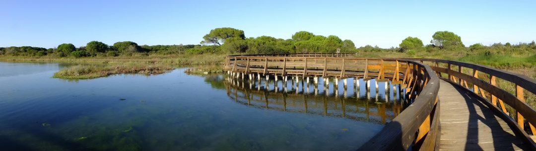 Parco del Delta del Po di Rosolina