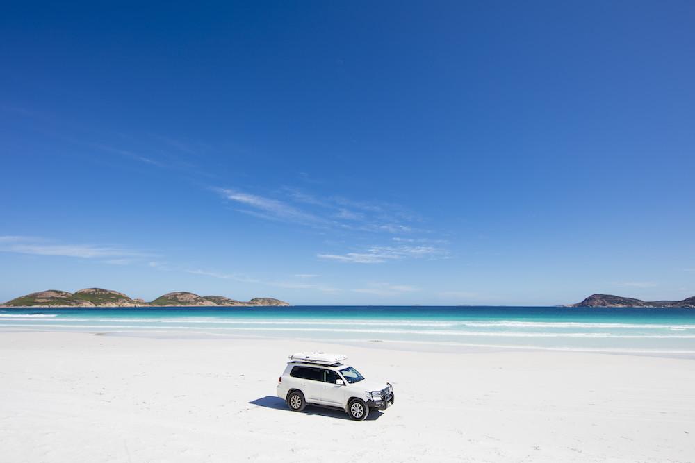 Dove avvistare i canguri in spiaggia