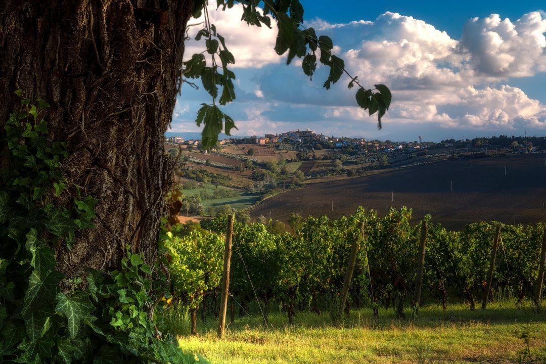 Notte Romantica a Morro d'Alba, provincia di Ancona, Marche
