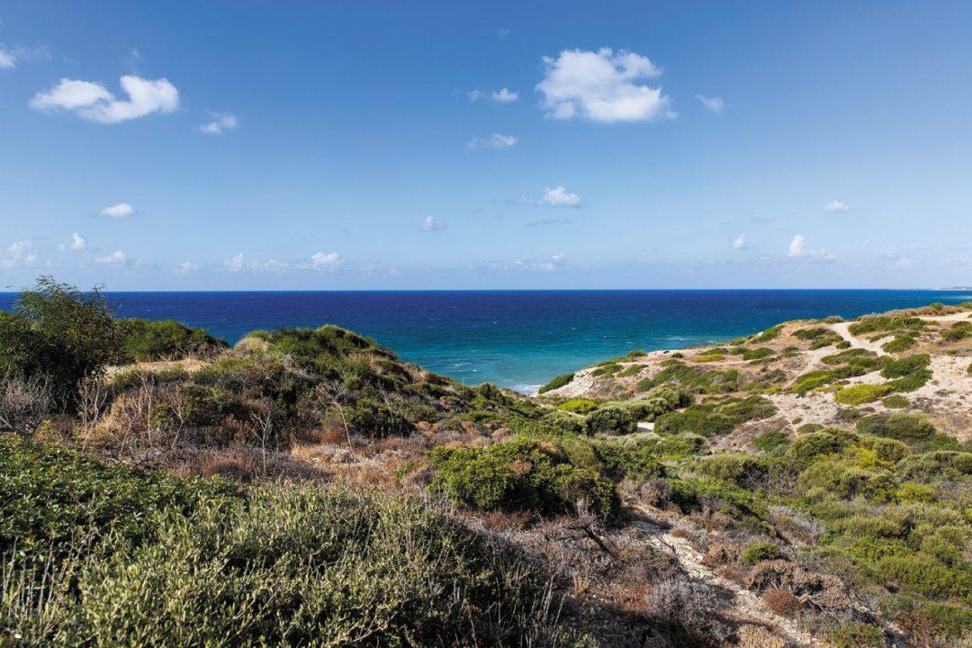 A Pafos, tra spiagge divine, siti archeologici e villaggi tradizionali nell'entroterra