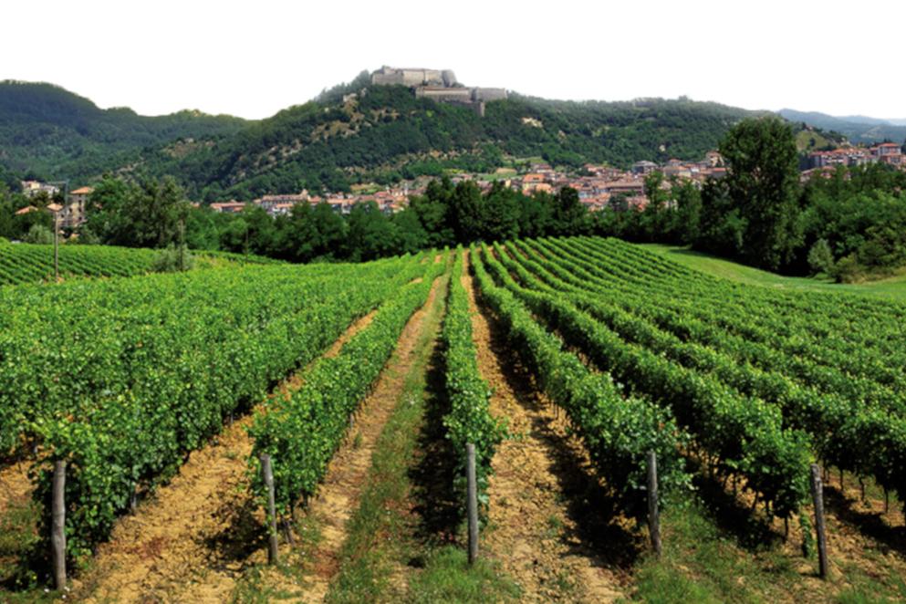 Alla scoperta dei Beni Unesco, tra Monferrato e Liguria