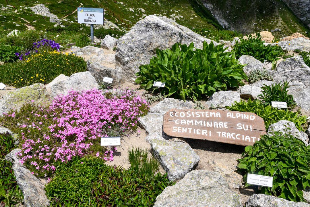 Giardino Botanico Alpino di Saussurea (Valle d'Aosta)