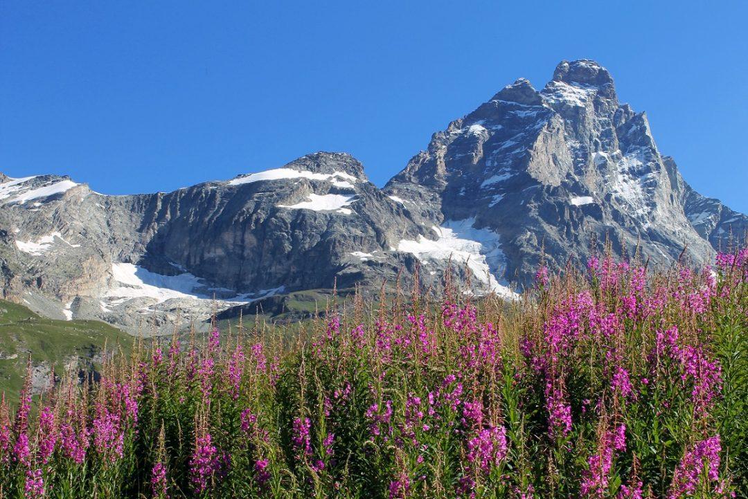 Valtournenche (Valle d'Aosta)