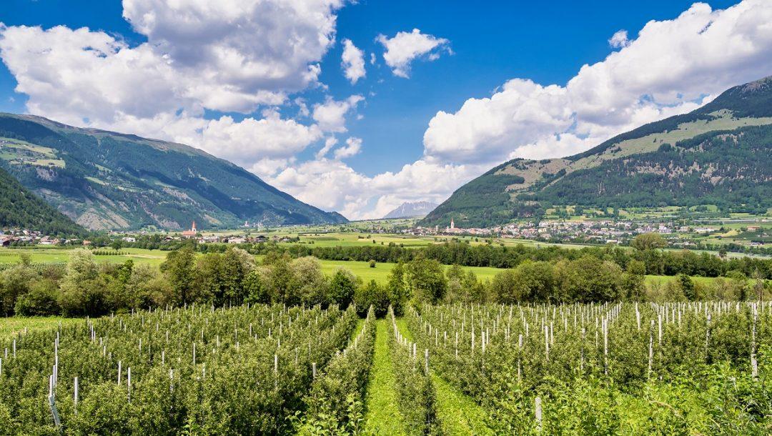 Val Venosta (Alto Adige)