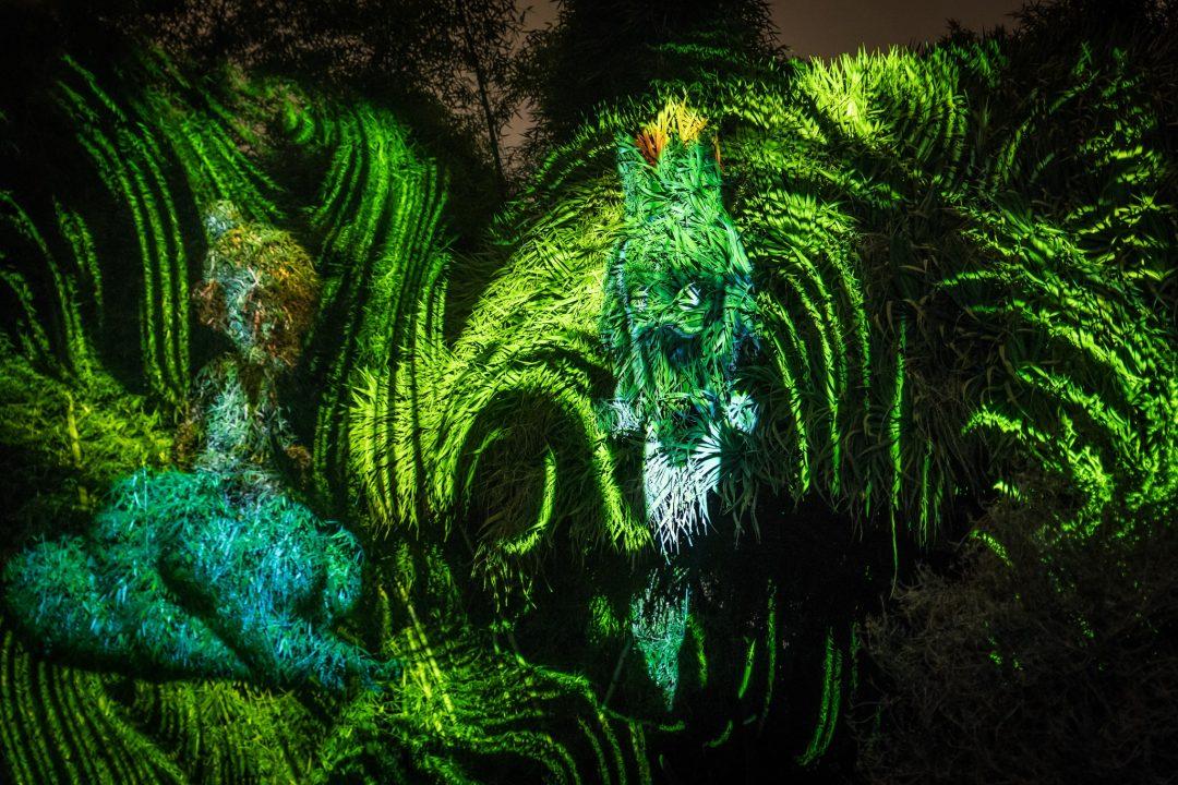 """""""Anima mundi"""", l'Orto Botanico di Palermo si illumina con un'installazione multimediale"""
