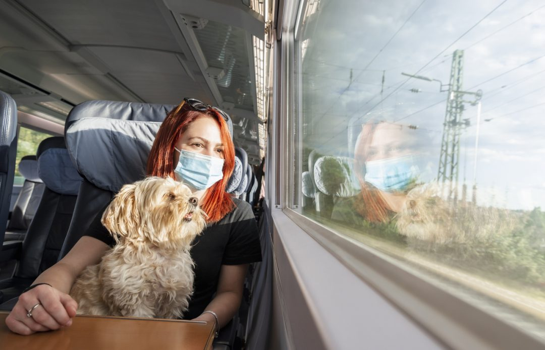 In treno con gli animali