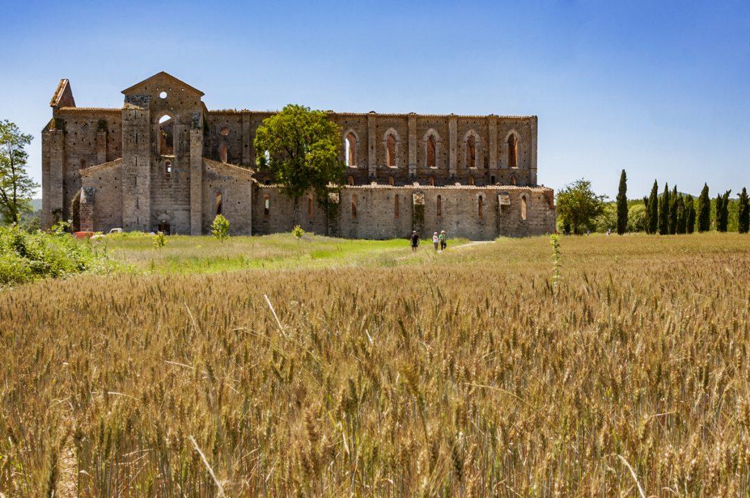 Il mare bello della Toscana: a Follonica, tra spiagge, cantine e borghi, l'estate è un pieno di natura