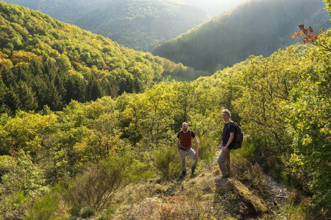 Lee Trail