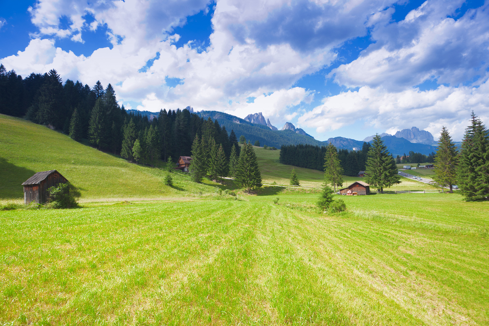 Rigenerarsi tra Yoga e Trekking in Val di Fiemme