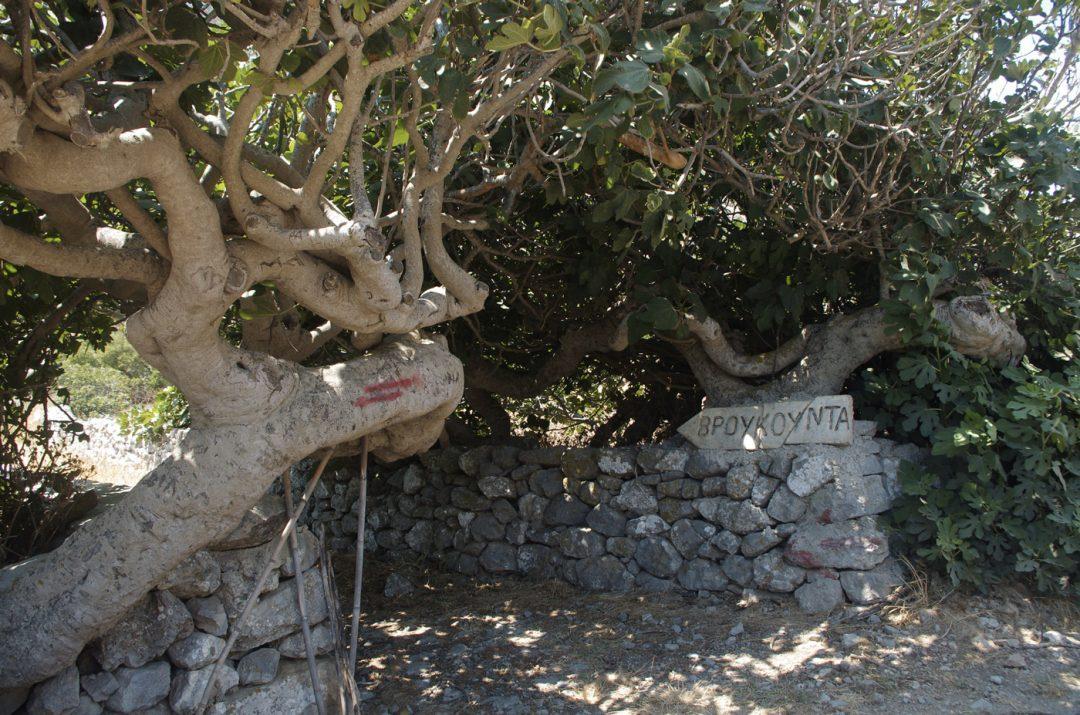 I trekking a Karpathos