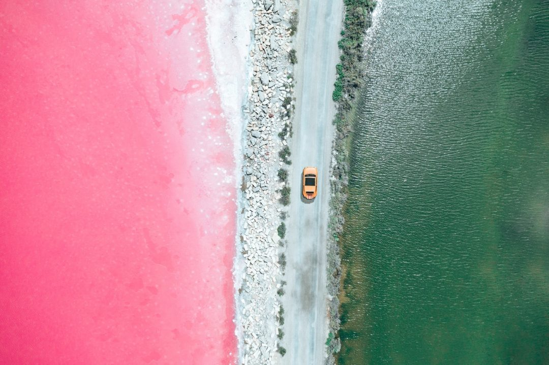 salina di Aigues-Mortes