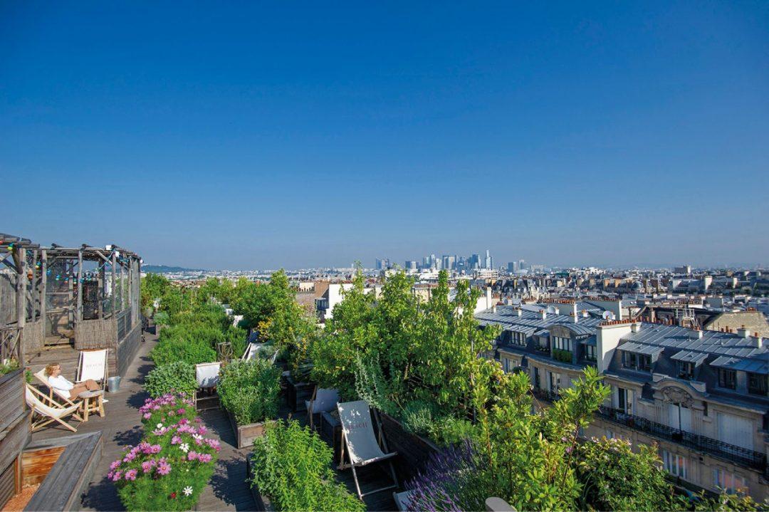 Com'è verde l'orizzonte: viaggio tra gli orti urbani sui tetti di Parigi