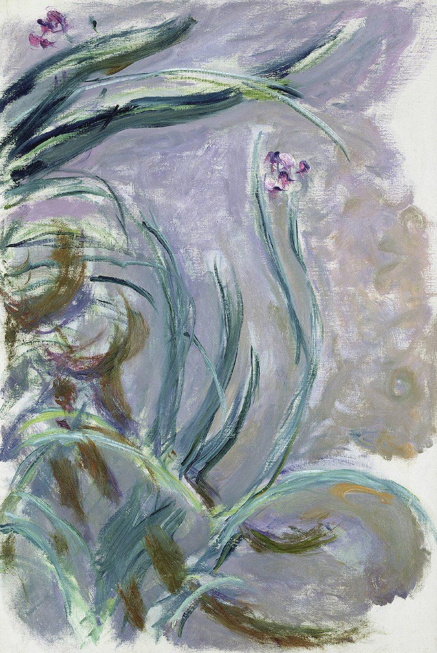 Iris (1924-1925 circa)