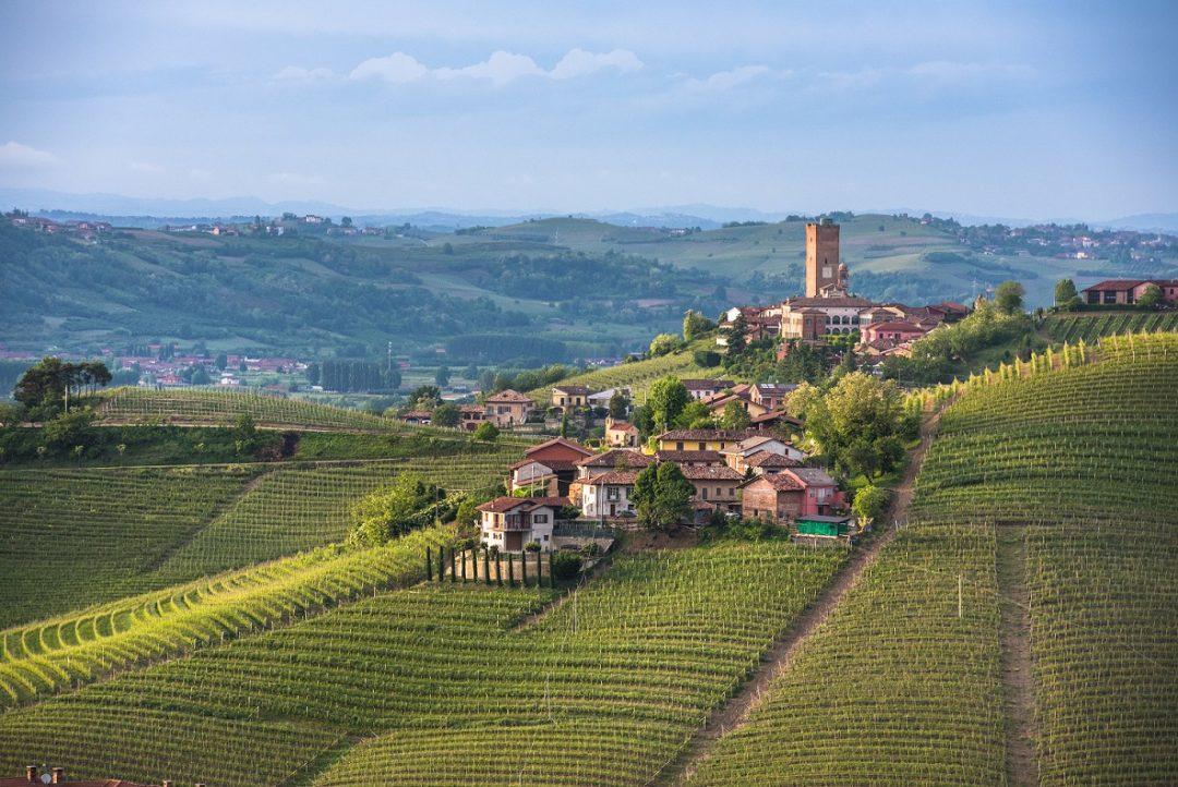 Barbaresco, Cuneo (Piemonte)
