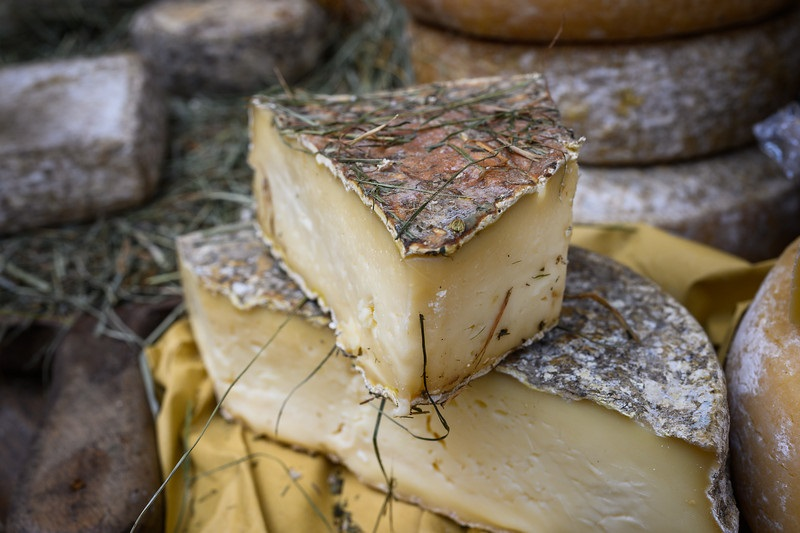 Tre giorni a Bra tra formaggi, vino buono, passeggiate nella storia e perle architettoniche