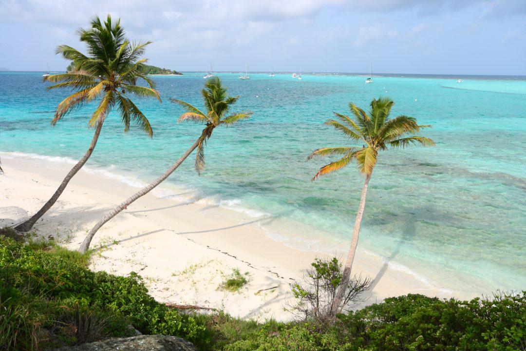 3° St. Vincent e Grenadine