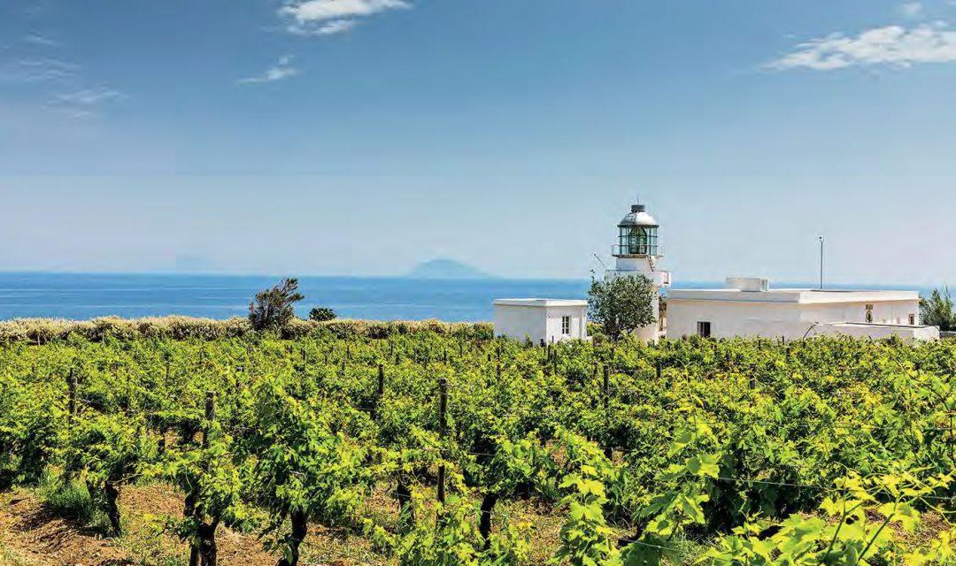 Cantine e wine resort in Sicilia