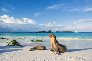 Questa è l'isola più bella al mondo del 2021 (dove tutti vorremmo andare)