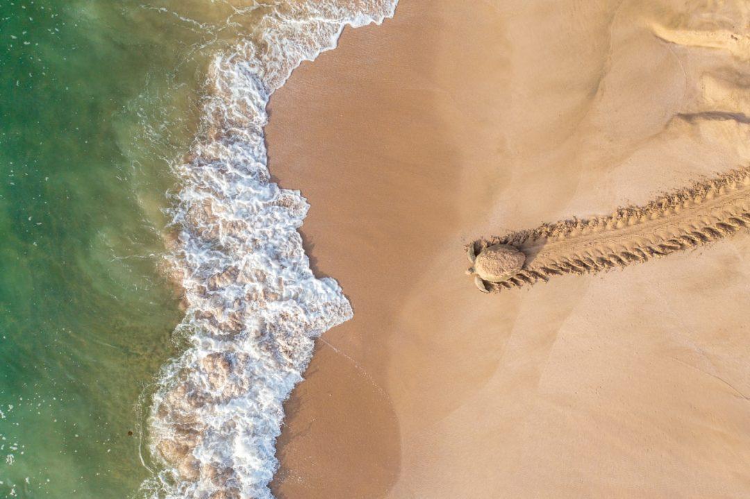 Dall'alto è tutto un altro mondo: i vincitori del Siena Drone Photo Awards 2021